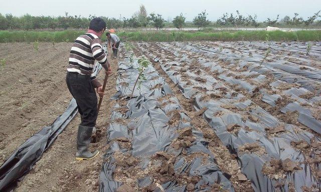 مسئله آب در اصفهان باعث ایجاد نارضایتی هایی در بین کشاورزان شده است