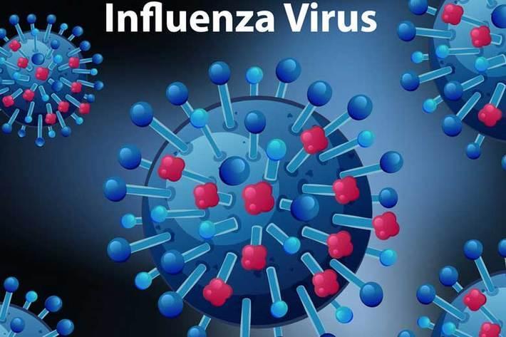 بدترین سناریوی ممکن برای همزمانی کرونا و آنفلوآنزا