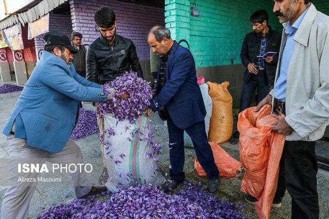 قیمت زعفران بالا می رود، کشاورزان عجله نکنند