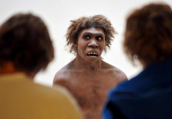 رابطه انسان های اولیه با نئاندرتال ها