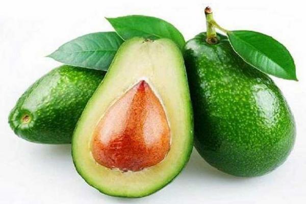 ترکیب موجود در آووکادو به درمان لوسمی یاری می نماید